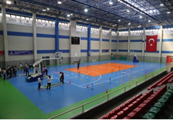 Steel Construction Sports Facilities